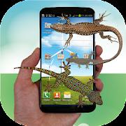Lizard run in phone prank