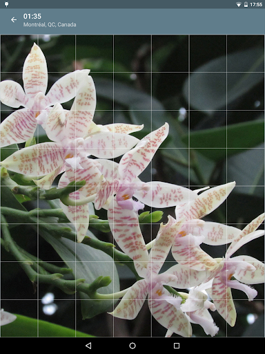Jigsaw Puzzle: Flowers screenshot 16
