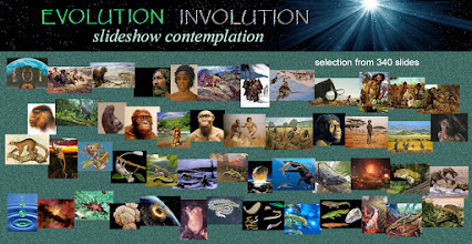 Photo: A Gallery Selection From 340 Slides   Evolution Involution is a unification of what conventional wisdom tends to separate as two fundamental aspects of reality - our phenomenal biocosmic evolution from before and after the Big Bang and its continuum with a numinous universal consciousness.  The slideshow presents images of our human phylogeny as an involution from the present back to before we were atoms and beyond. Chapters include topics relating to anthropology, archaeology, genetics, paleontology and astro-biogenesis.  See more: http://evolution-involution.org