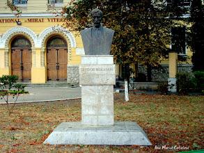 Photo: Bustul lui Teodor Murasanu - (2009.09.06)