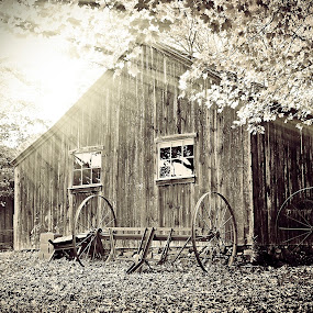 OId Barn house by Joseph Humphries - Buildings & Architecture Other Exteriors ( old, monochrome, barn, vintage, sunset, fall, raysoflight, house,  )