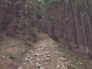 """Photo: 7.Nie wierzcie jak wam mówią, że Szczebel to niska góra: stromizna naprawdę daje w """"cztery litery"""", o czym lojalnie ostrzega Dariusz Gacek w swoim przewodniku """"Beskid Wyspowy"""": """"Mozolne, strome podejście (ponad 600 m różnicy wysokości) z głębokiej doliny Raby na jeden z wyższych szczytów Beskidu Wyspowego"""" (s. 108)."""