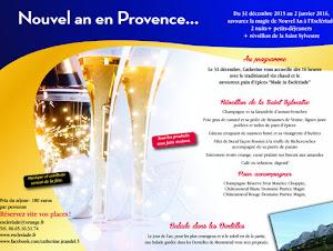 nouvel-an-en-provence-en-chambre-dhote-lescleriade