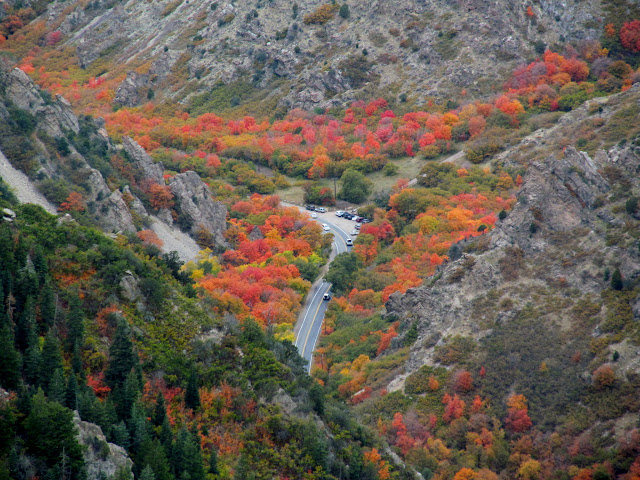 Mill Creek Canyon road