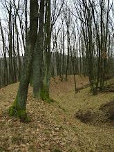 Photo: Val na Slovanskom hradisku starý 1200 rokov.