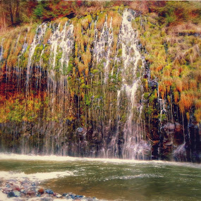 Mossbrae Falls by Sherry Gardner - Landscapes Waterscapes ( siskiyou county, waterfalls, dunsmuir )
