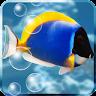 fishnoodle.aquarium