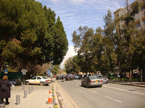 Photo: The avenue in front of the Museum
