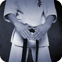 Karate Pack 2 Live Wallpaper icon