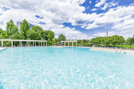Large resort-style pool on a bright day