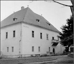 Photo: Muzeul de Istorie sursa Facebook. R.C.