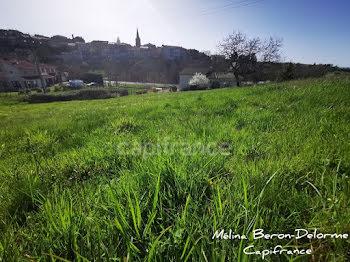 terrain à Bussieres (42)