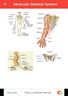 Download Human Anatomy For PC Windows and Mac apk screenshot 4