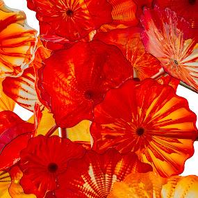 by William Stansbury - Artistic Objects Glass ( orange, glass, seattle washington, glass art, glass museum,  )