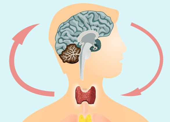 Why Your 'Mental Health Disorder' Might Actually Be A Serious Thyroid Condition
