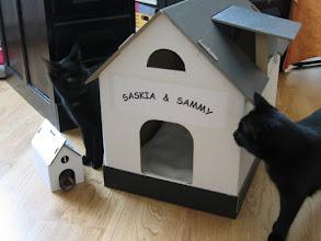 Photo: my home ist my castle.... inzwischen fehlt das Dach, weil Katerchen drauffiel. *g* (Wohnzimmer)