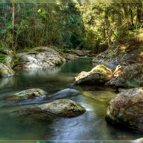 by Pat Kiellor - Landscapes Waterscapes