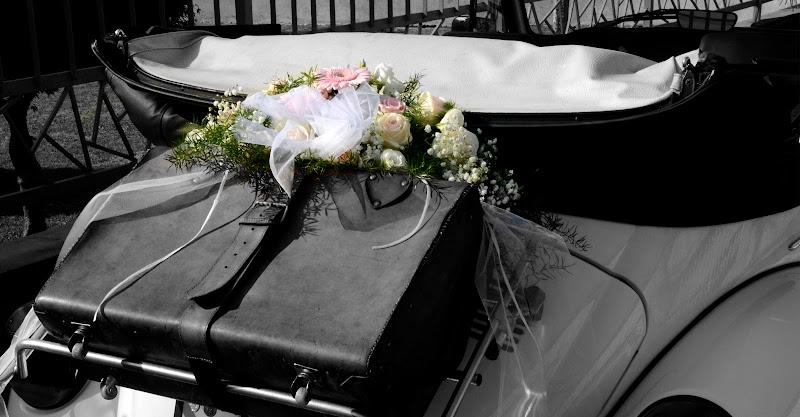 La Valigia degli Sposi di domenicobarreca
