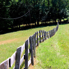 Fence by Janet Smothers - Landscapes Prairies, Meadows & Fields (  )