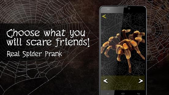 Real Spider Prank - náhled