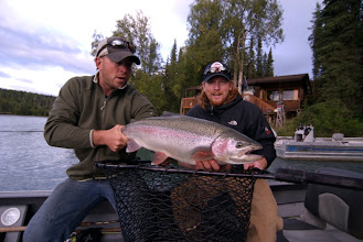 Photo: The Kenai River produces some of the largest rainbow trout in the state of Alaska.