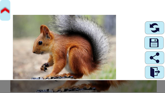 Squirrel Puzzles. - screenshot thumbnail