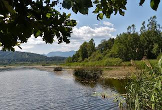 Photo: Im Naturschutzgebiet Sablatnigmoor.
