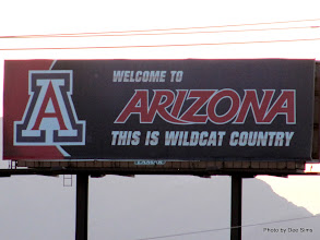 Photo: (Year 3) Day 40 - Now in the State of Arizona