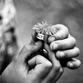 In our children's hands, the peace grows by Annelie Hallberg - Novices Only Objects & Still Life ( hands, bw, kids, nikon, flower )