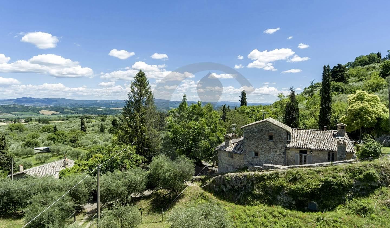 Farm house with outbuildings and garden Sarteano