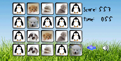 Match the Pets memory games