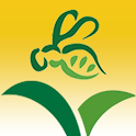 BeeConnected icon