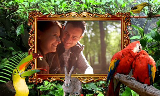 Jungle Frames Photo Editor