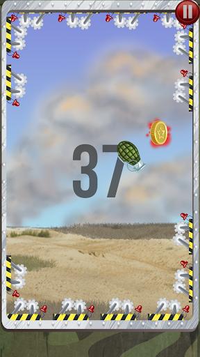 Grenade Fly