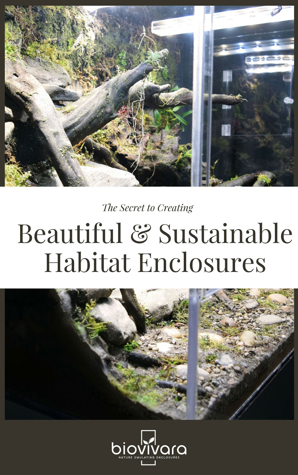 The Secret to Beautiful & Sustainable Habitat Enclosures E-book Cover Page