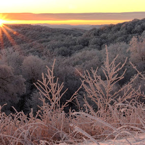 Snowbird Sunrise by Drew Campbell - Landscapes Sunsets & Sunrises