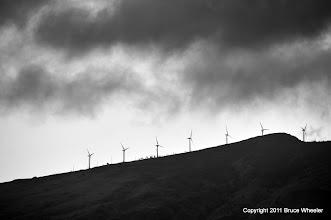 Photo: wind farm