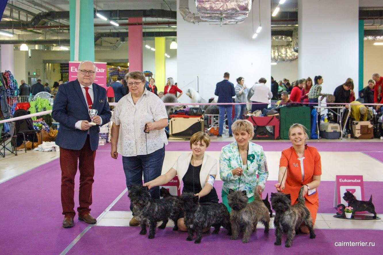 Фото керн терьеров с хендлерами, экспертом и владельцем питомника Еливс на призовом месте выставки