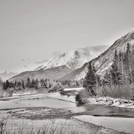 Winter In Portage by Patricia Phillips - Black & White Landscapes ( winter black and white portage alaska )
