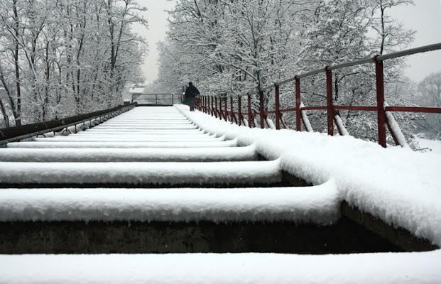 Il piano forte di neve di mattia pellegrini