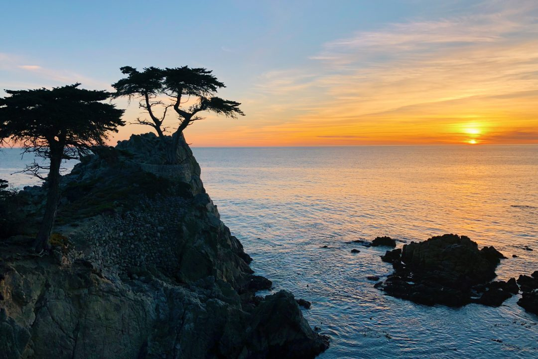 Things to do in Cali | 17 Mile Drive