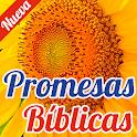 Promesas Biblicas Imagenes icon