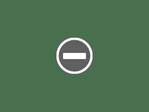 Photo: Blossom trees in Albert Park.