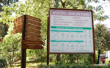 Photo: Atatürk Arboretumu Termal - Yalova - 01.08.2014
