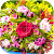 Wonderful Flowers Puzzle file APK Free for PC, smart TV Download