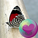 Butterflies HD Wallpapers icon