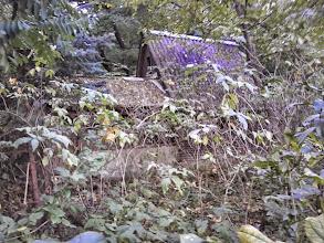 Photo: Abandoned shack (Lake of Verpelét, 2014)