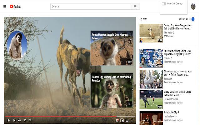 Youtube ES (Enhancement Suite)