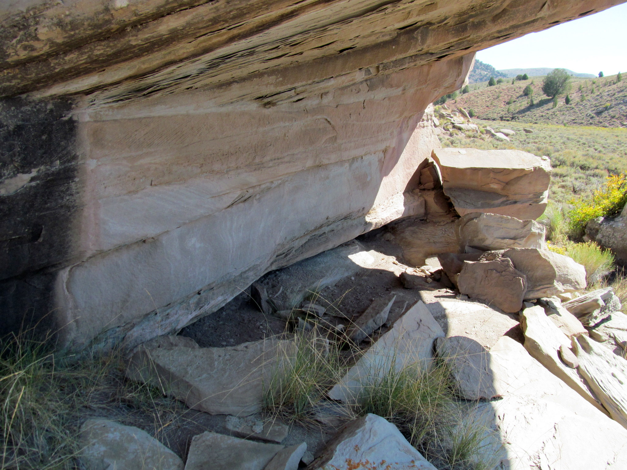 Photo: Rock shelter beneath an overhang