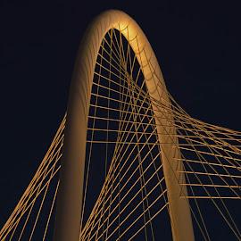 Calatrava Bridge, Dallas, TX by John Berry - Abstract Patterns